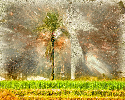 Photograph - Nile River Split Dimensional Merge.... by Paul Vitko