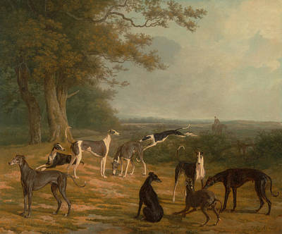 Nine Greyhounds In A Landscape Art Print