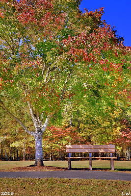 Photograph - Ninety Six National Historic Site Bench In The Fall by Lisa Wooten