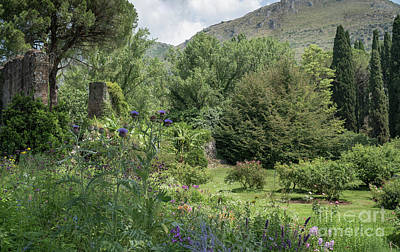 Photograph - Ninfa Garden, Rome Italy 3 by Perry Rodriguez