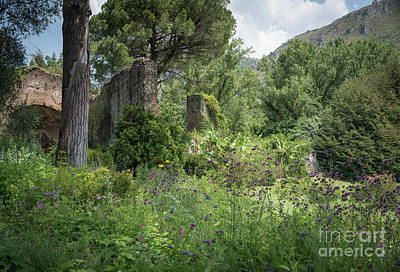 Photograph - Ninfa Garden, Rome Italy 4 by Perry Rodriguez