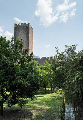 Photograph - Ninfa Garden, Rome Italy 8 by Perry Rodriguez