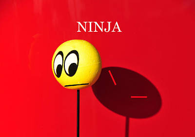 Photograph - Ninja by David Lee Thompson