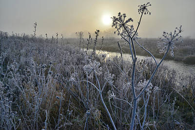 Photograph - Nippersink Creek In Glacial Park On Foggy Morning by Ray Mathis