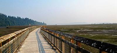 Photograph - Nisqaully Boardwalk by Martin Cline