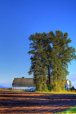 Photograph - Nisqually Barn by David Patterson