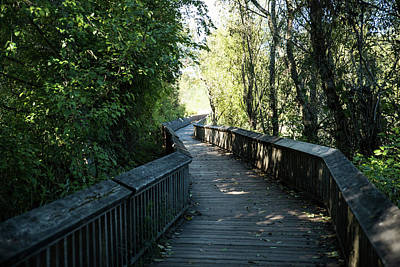 Photograph - Nisqually Boardwalk 2 by Tom Cochran