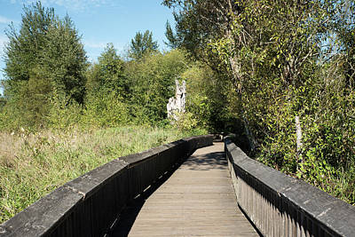Photograph - Nisqually Boardwalk 3 by Tom Cochran