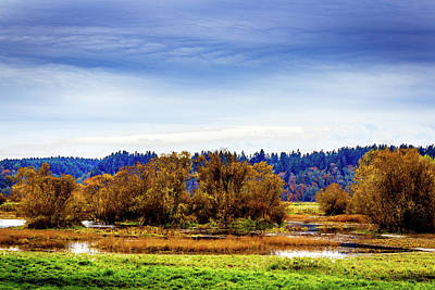 Photograph - Nisqually Refuge Wetlands And Marsh by Barry Jones