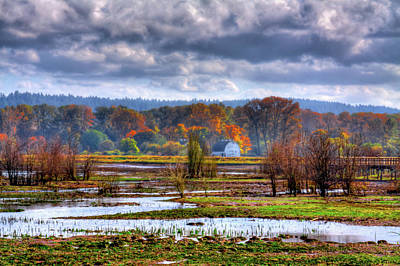 Nisqually Wildlife Refuge P34 Art Print by David Patterson