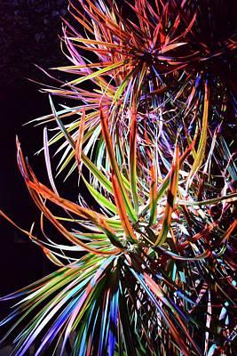 Photograph - Nite Lights by Florene Welebny
