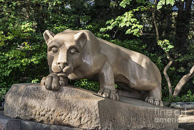 Nittany Lion Photograph - Nittany Lion by John Greim
