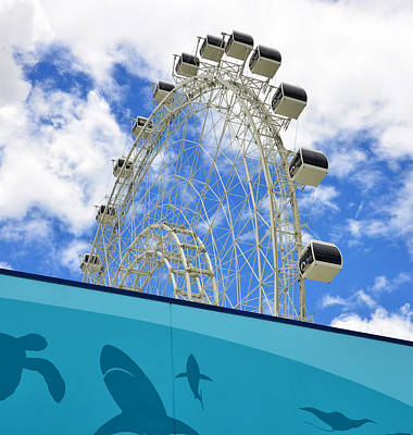 Photograph - Sea Life And The Orlando Eye by David Lee Thompson