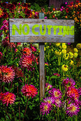 Of Dahlia Photograph - No Cutting Sign In Garden by Garry Gay