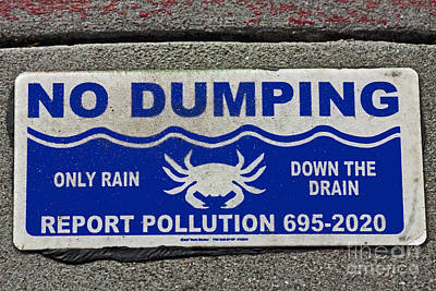 No Dumping  A World Of Words Series Original by Mark Hendrickson