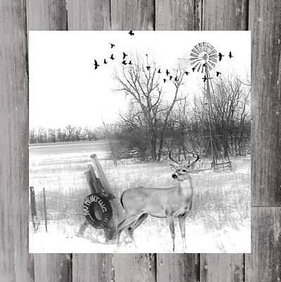 Photograph - No Hunting Winter  Buck Scene by Michele Carter