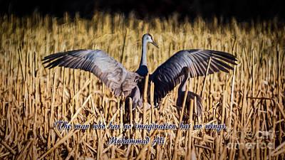 Photograph - No Imagination, No Wings by Janice Rae Pariza