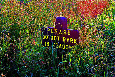 Photograph - No Parking - Please by Joseph Coulombe