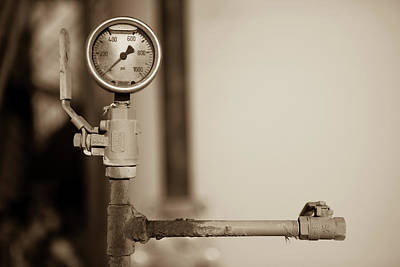 Photograph - No Pressure by Jonas Wingfield