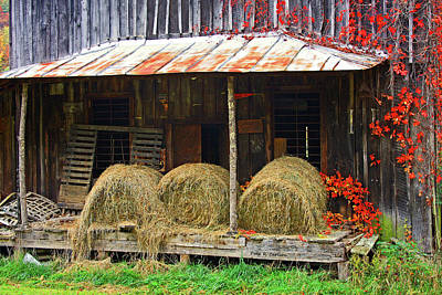 Photograph - No Room In The Barn by Dale R Carlson