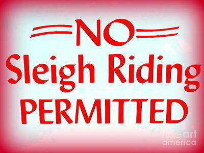 Photograph - No Sleigh Riding by Ed Weidman