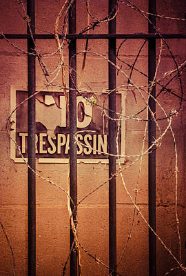Photograph - No Trespassing by Carolyn Marshall