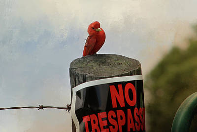 Digital Art - No Trespassing by TnBackroadsPhotos
