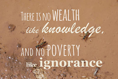 Photograph - No Wealth Like Knowledge by Elena Schaelike