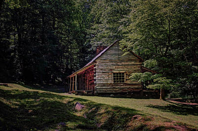 Tennessee Historic Site Photograph - Noah Ogle - Cabin by Nikolyn McDonald