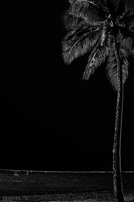 Photograph - Noche Negra by Ed Smith