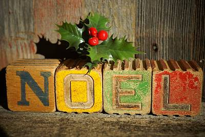 Photograph - Noel 3 by Steven Clipperton