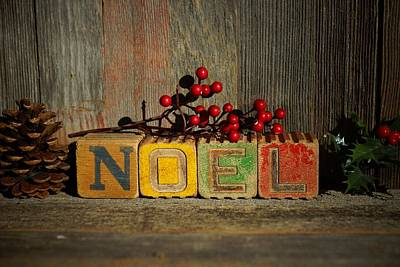 Photograph - Noel by Steven Clipperton