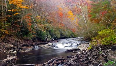 Photograph - Noland Creek In Autumn by Joe Duket