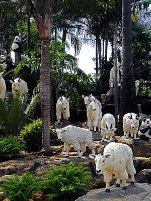 Photograph - Nong Nooch Gardens 20 by Ron Kandt