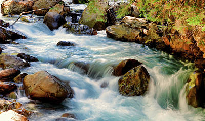 Photograph - Nooksack River by Rick Lawler