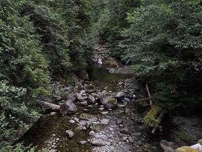 Photograph - Nootka Sound Creek #1 by Nootka Sound