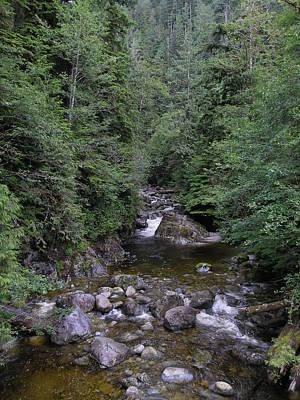 Photograph - Nootka Sound Creek #3 by Nootka Sound