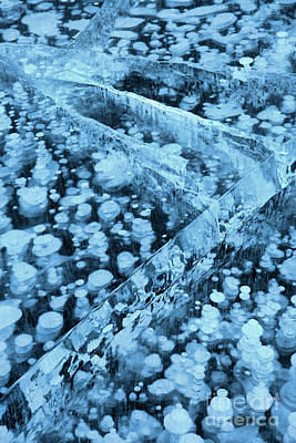 Photograph - Nordegg Ice Bubbles And Cracks by Adam Jewell