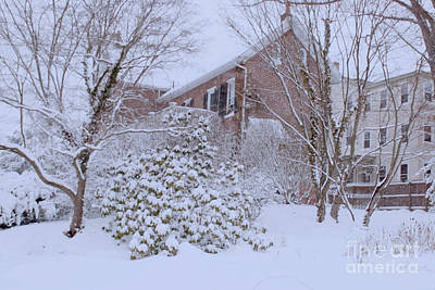Photograph - Nor'easter At West Chester by Sandy Moulder