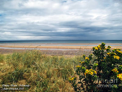 Photograph - Normandy Beach by Joan  Minchak