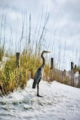 Art Print featuring the photograph Norriego Point Heron by Mel Steinhauer