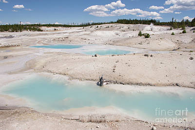 Photograph - Norris Geyser Basin by Jason Kolenda