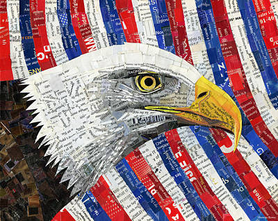 Mixed Media - North American Bald Eagle by Shawna Rowe