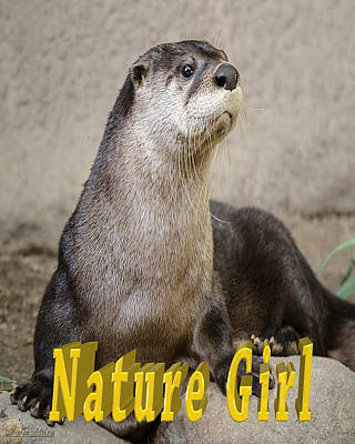 Text Photograph - North American Otter Nature Girl by LeeAnn McLaneGoetz McLaneGoetzStudioLLCcom
