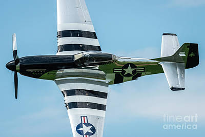 Stunt Flyer Photograph - North American P51d Mustang Quick Silver by Joann Long
