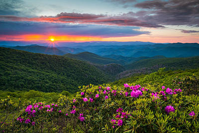 Mountain Royalty-Free and Rights-Managed Images - North Carolina Blue Ridge Parkway Landscape Craggy Gardens NC by Dave Allen