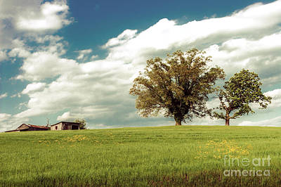 Photograph - North Carolina Farm On A Grassy Hill by Dan Carmichael