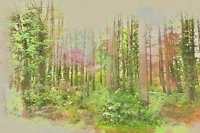 Digital Art - North Carolina Forest by Paulette B Wright