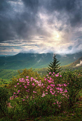 Landscapes Royalty-Free and Rights-Managed Images - North Carolina Spring Flowers Blue Ridge Parkway Scenic Landscape Asheville NC by Dave Allen