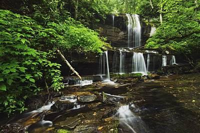 Photograph - North Carolina, United States Of by Natural Selection Robert Cable